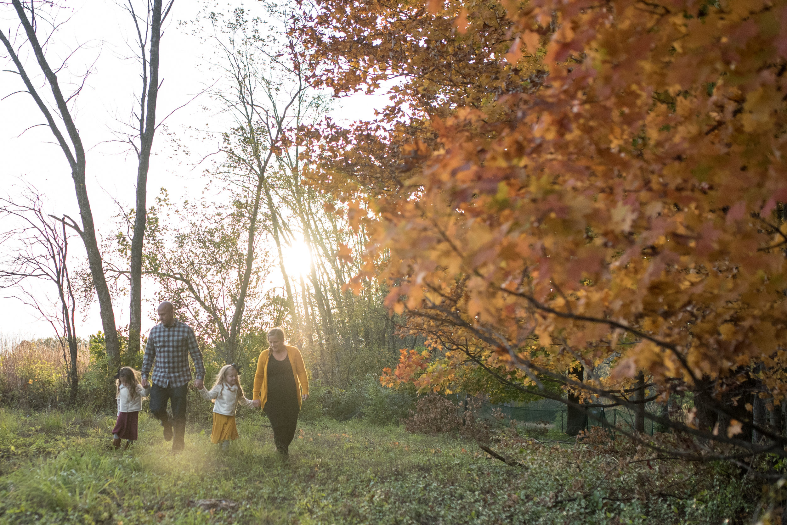 Family holding hands and walking in a park near fall trees