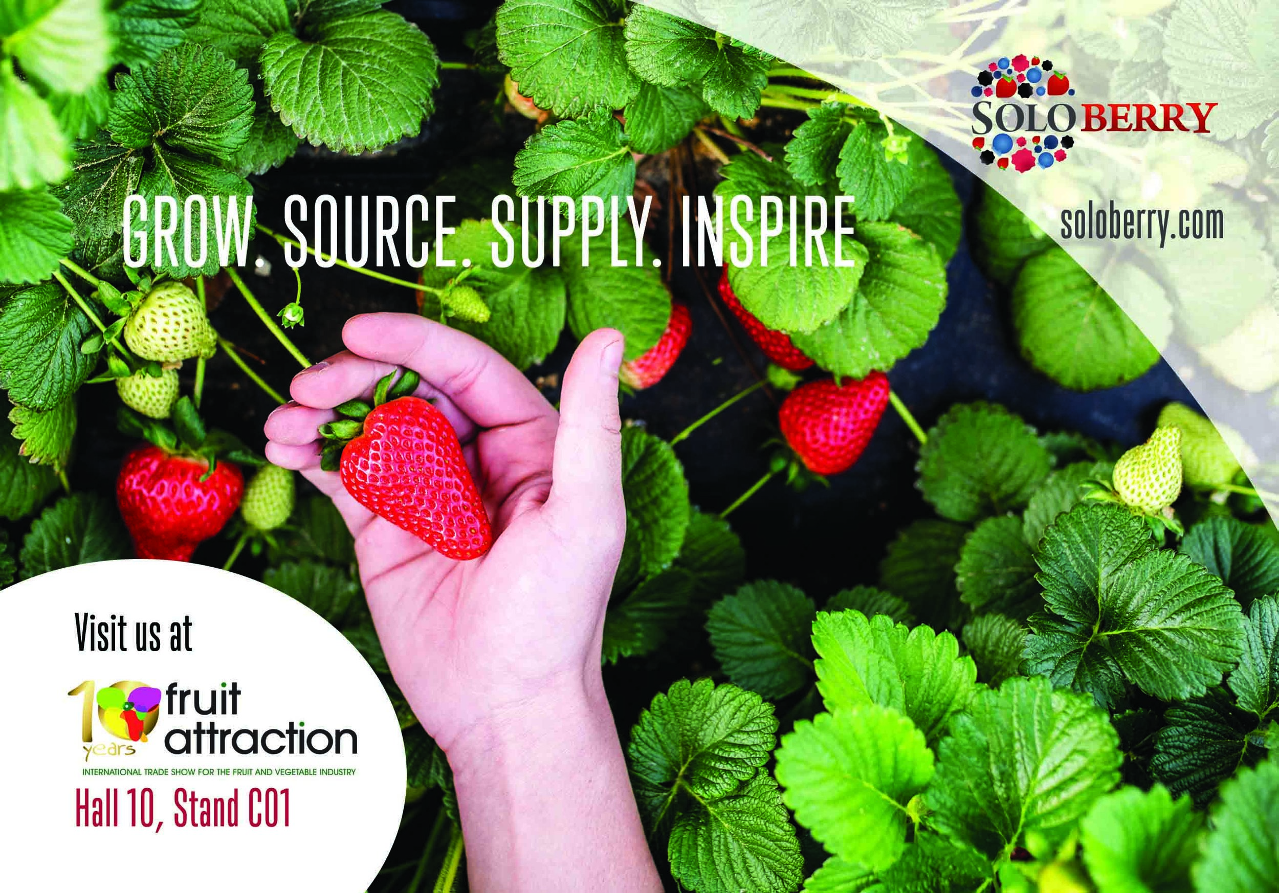 Soloberry will be attending Fruit Attraction, Madrid on 23rd-25th October 2018