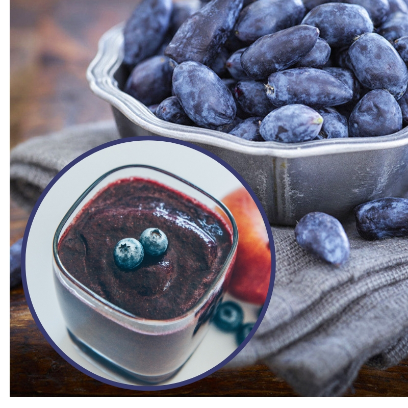 Soloberry completes journey to bring 'antioxidant-rich' haskap berries to the European market