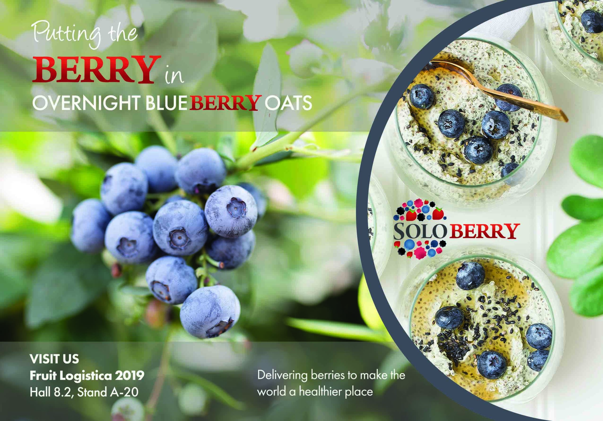 Soloberry will be attending Fruit Logistica 2019 this February in Berlin.