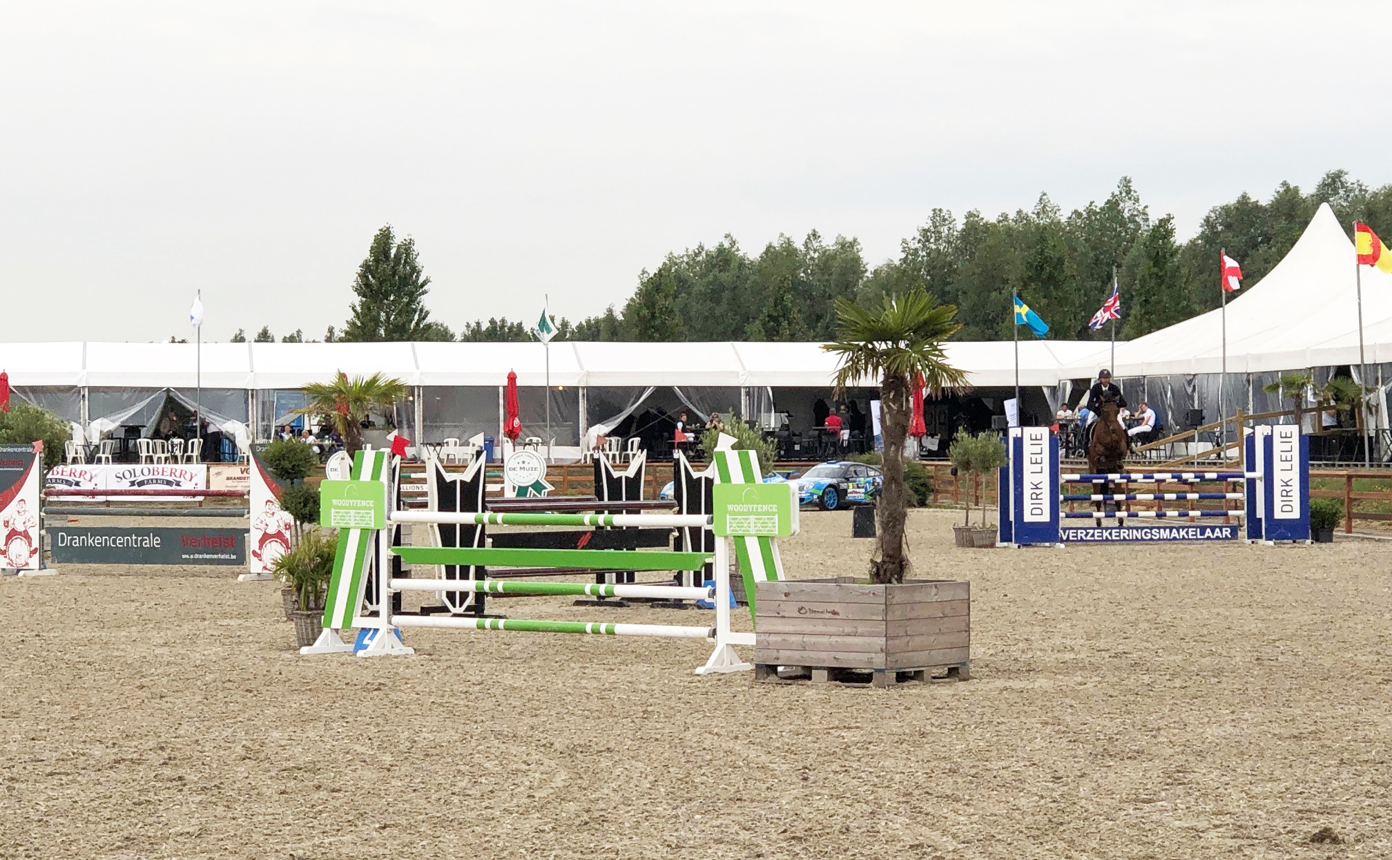 Show Jumping Soloberry