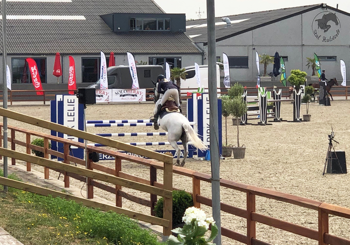 Show Jumping - Soloberry