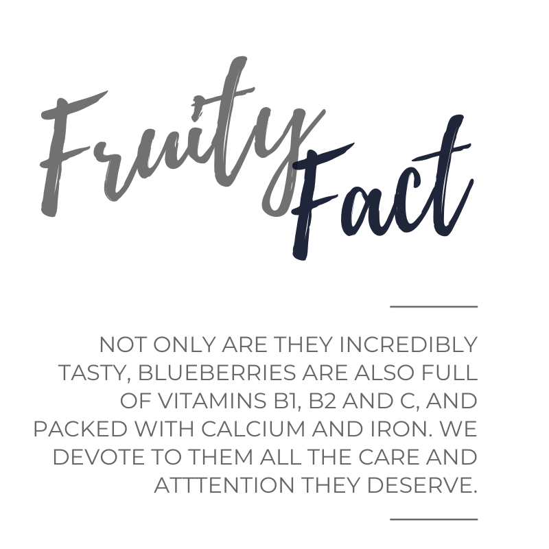 Blueberry Fruity Fact.png