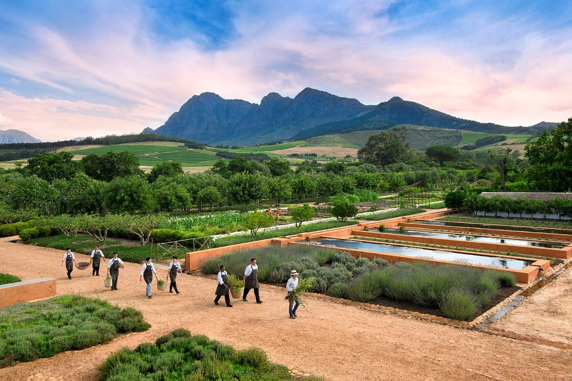 1.CHEFS-MARCHING-OUT-TO-GO-HARVEST-FOR-THE-KITCHEN-GARDEN-.jpg