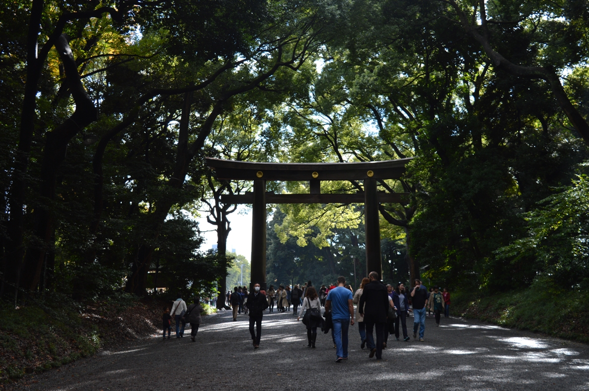 Japanese wedding - Torii gate