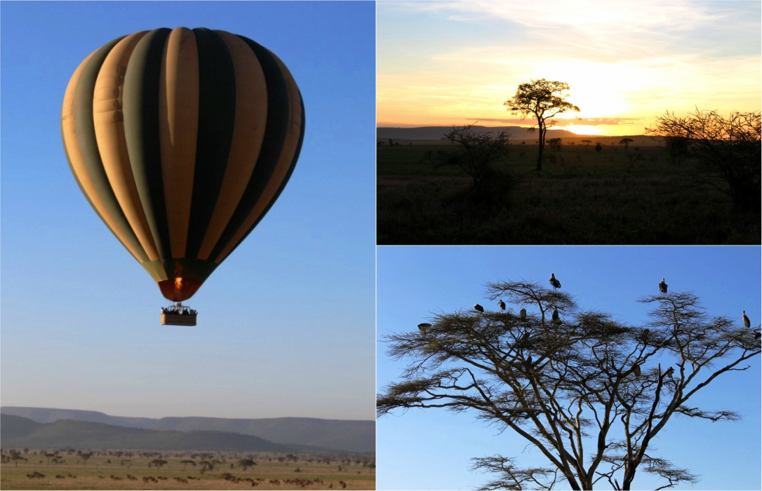 Incredible views over the African savanna