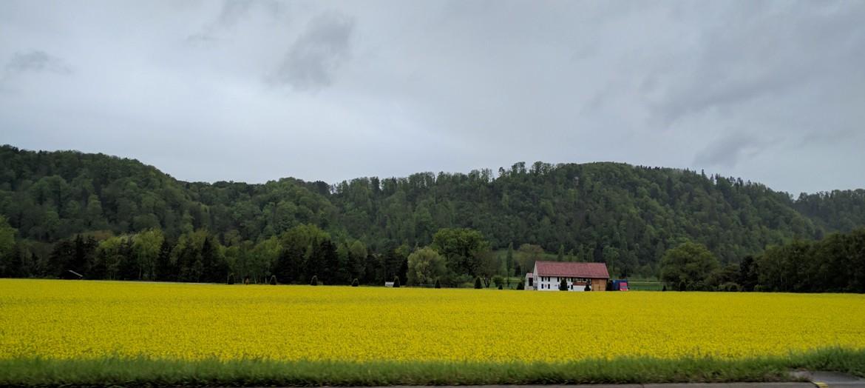 Scenic landscape in Swiss countryside
