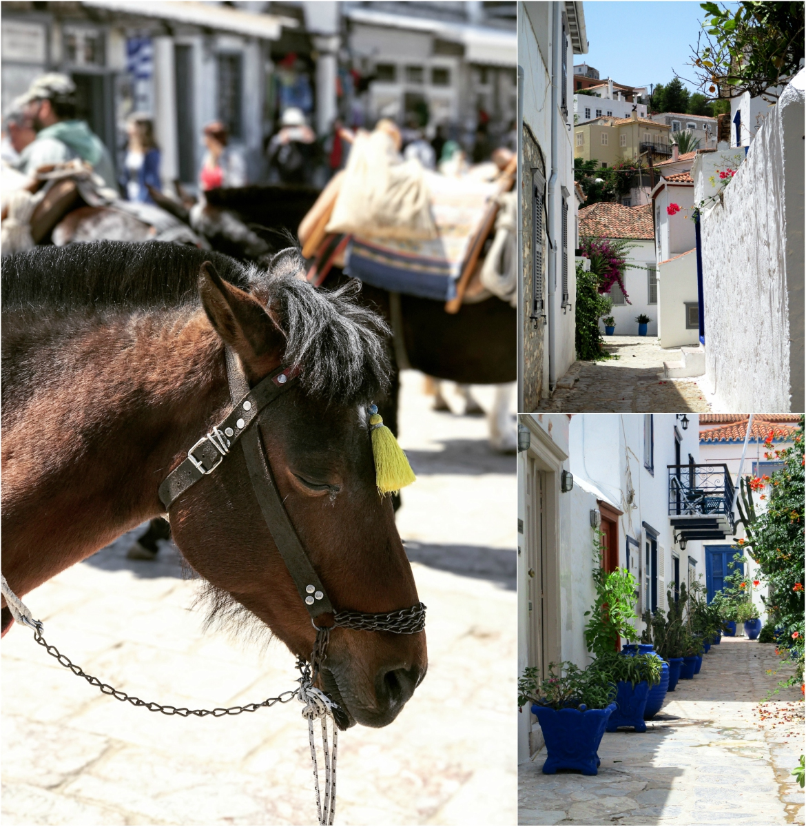 Άλογα και σοκάκια στην Ύδρα
