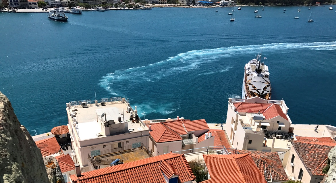 Hydra from above