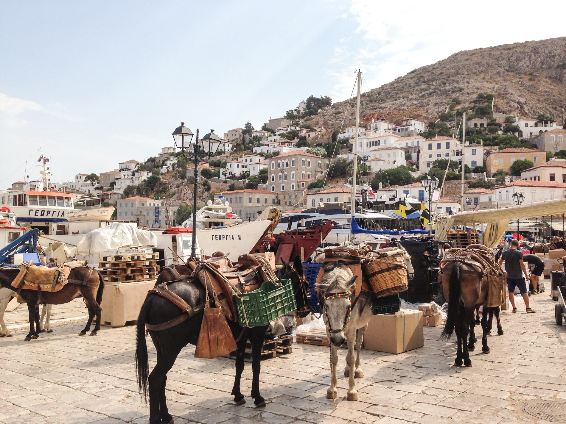 At the cosmopolitan island of Hydra, donkeys are the main means of transport. Source: Makenna May