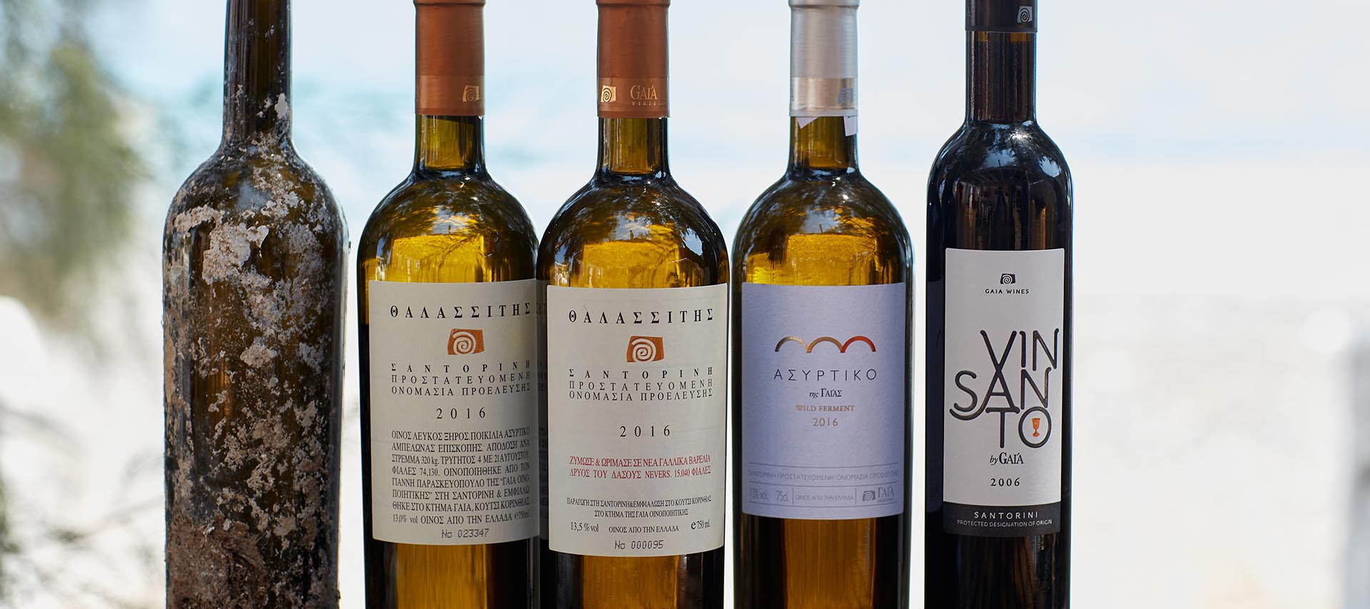 Thalassitis, Assyrtiko by Gaia  and  Vinsanto by Gaia  are only just a few of the wines produced by  Gaia Winery . Source: Gaia Winery