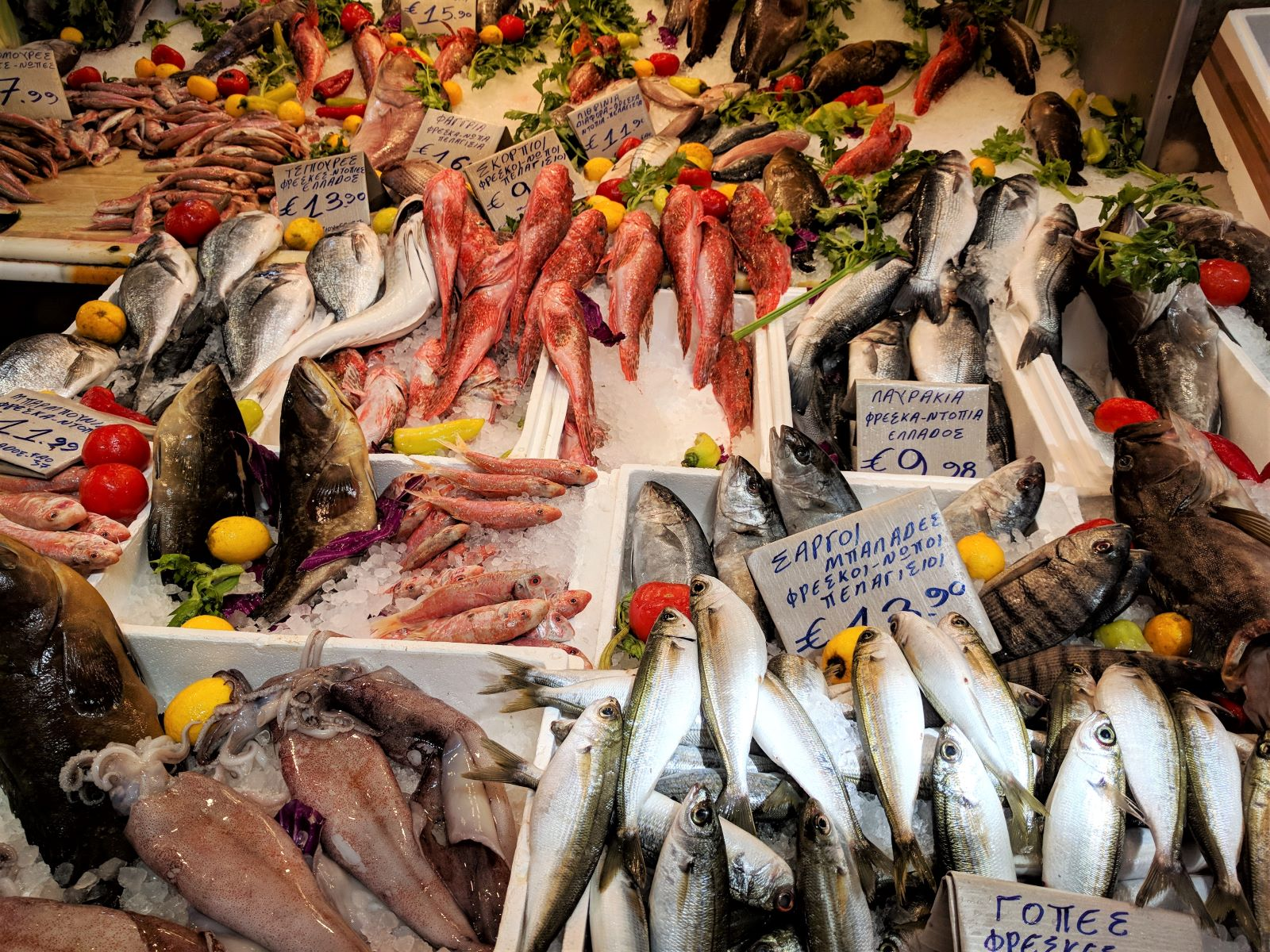 Fresh fish from the Aegean and Ionian sea are available for purchase inside the Varvakeios market in Athens.