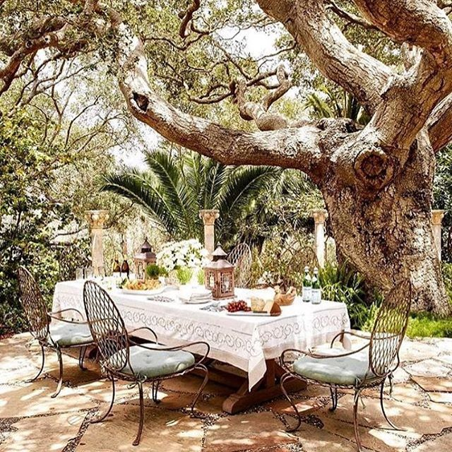We believe in indoor outdoor living at its best and our client was delighted with these Rose Tarlow chairs ✨🌿 #beauty and #comfort #indooroutdoor #enchanting #opulence #livingbeautifully #livingaroundtrees #thingswelove #creatingmemories #inbeautifulplaces #interiordesignerslife