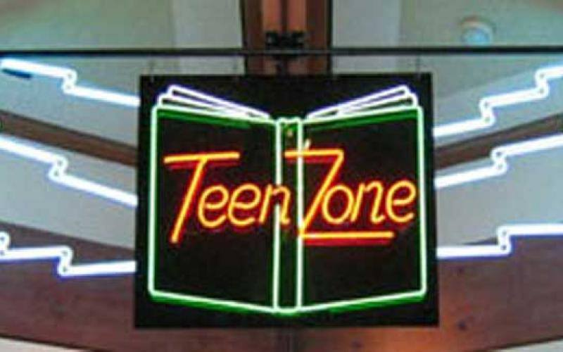 Teen Zone.  James Bertuzzi III, 2003. Benicia Public Library.  Photo by David Dodd.