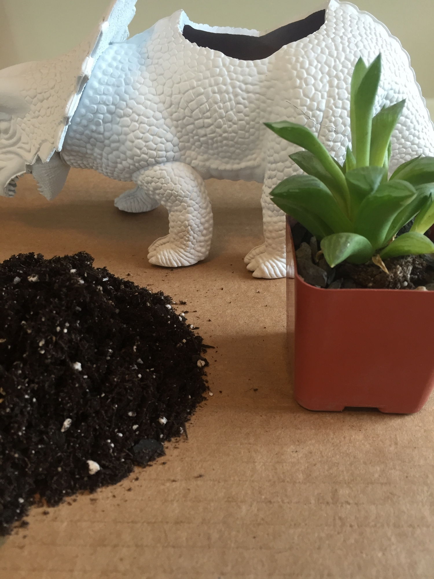 DIY Dinosaur Succulent Planters