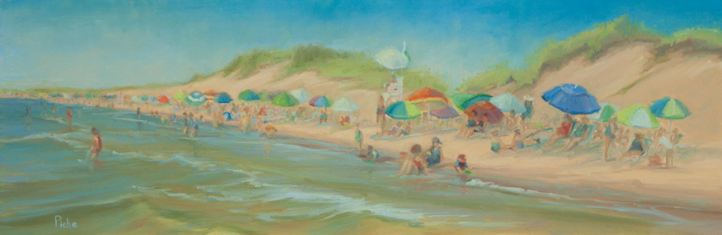 Race Point Beach Day