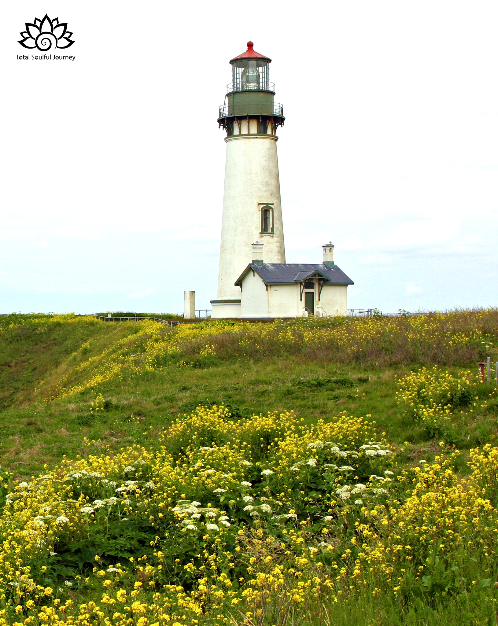 Let your Passion be the lighthouse that guides you to your purpose in life. Photo by Paul Garrett
