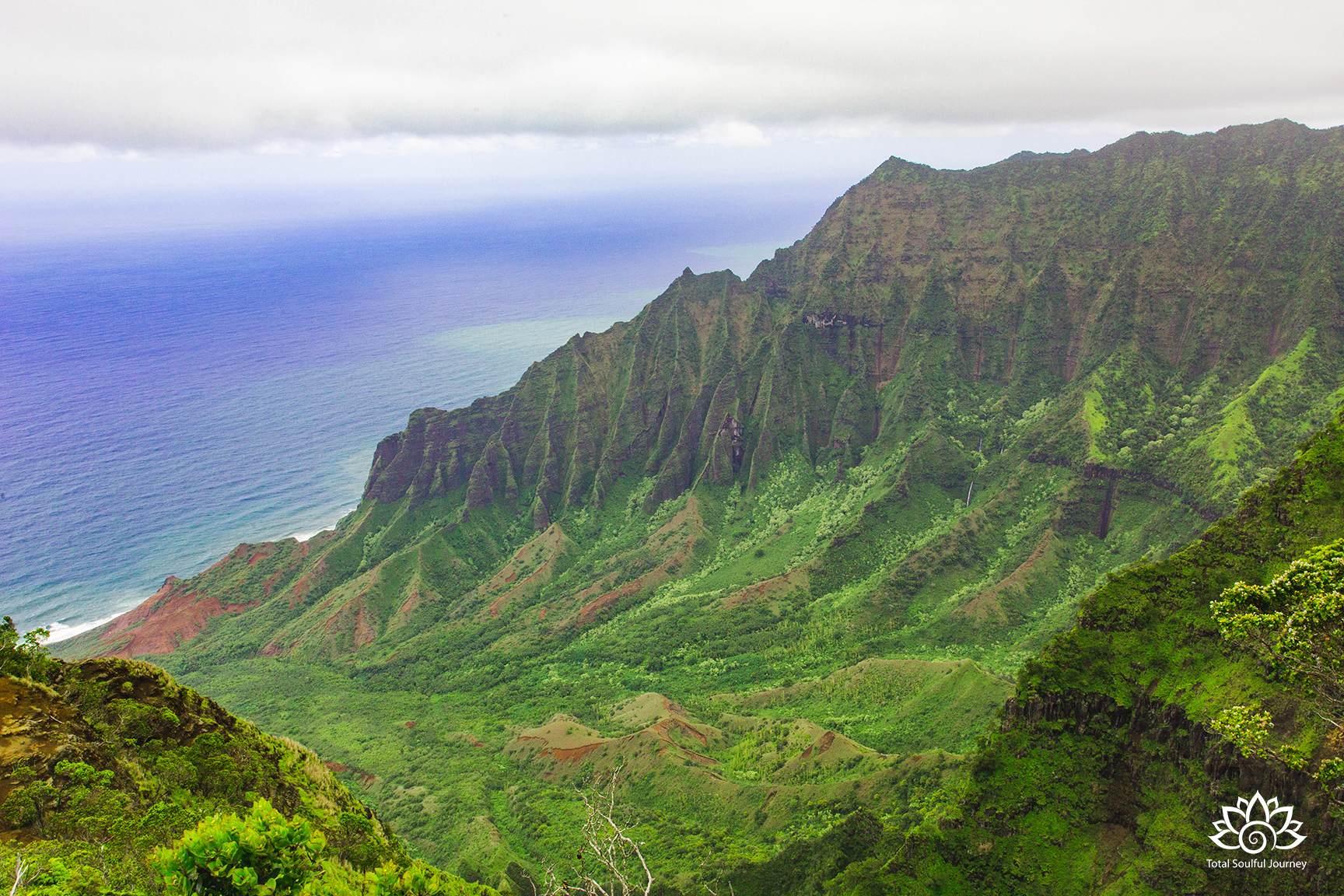 PHotography of The Kalalau Lookout by Paul Garrett