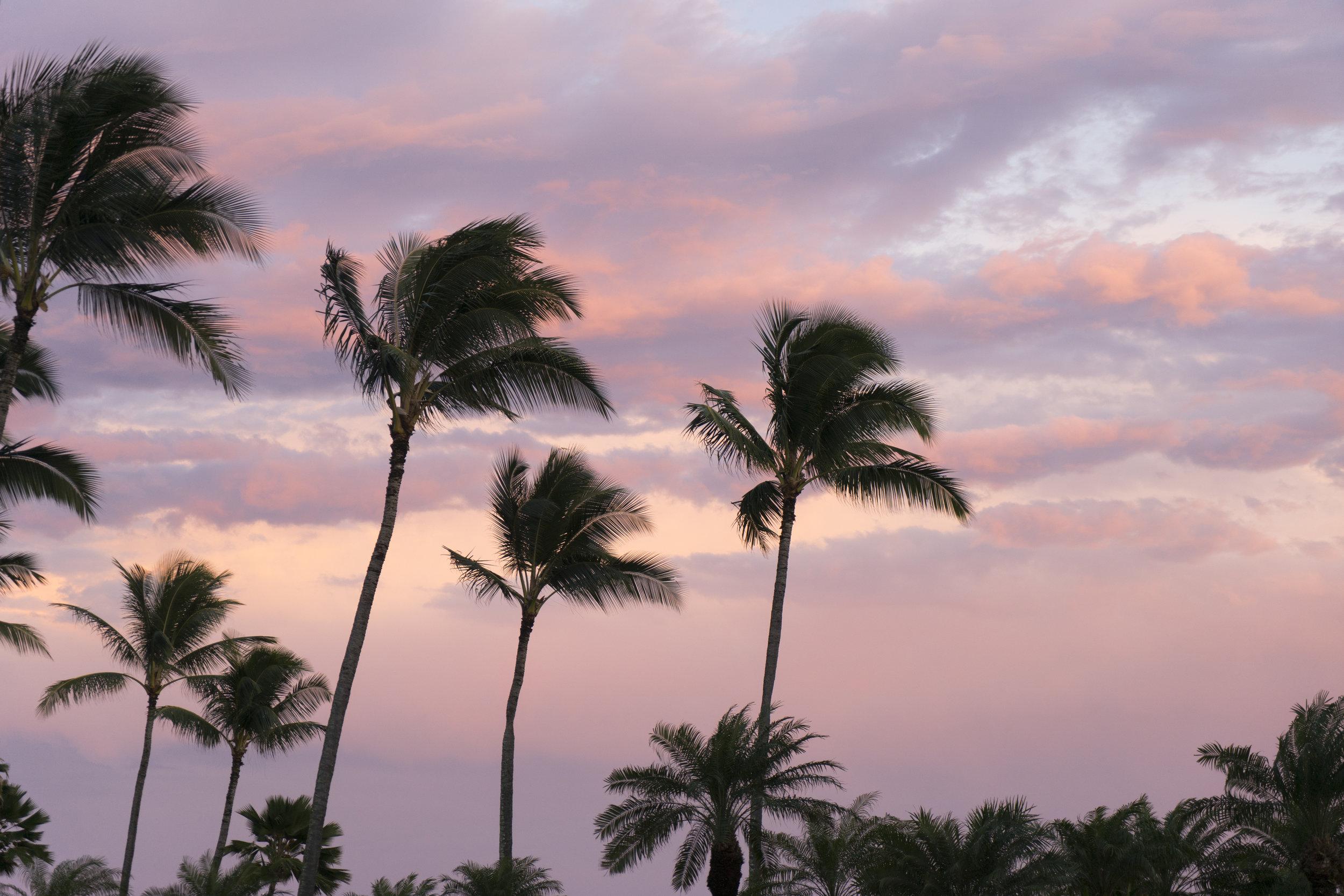 kauai-04.jpg