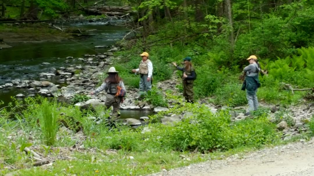 Wappinger's Creek at Orvis Sandanona