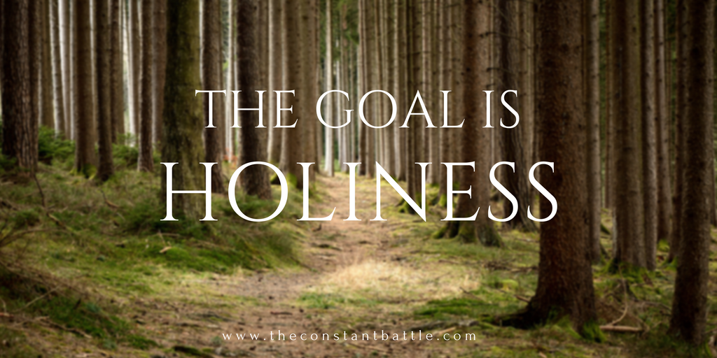 The Goal is Holiness.png