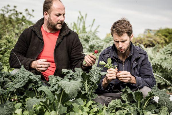 Chef Dean Parker & Food Waste Farmer Igor Vaintraub, West Sussex. 2017.