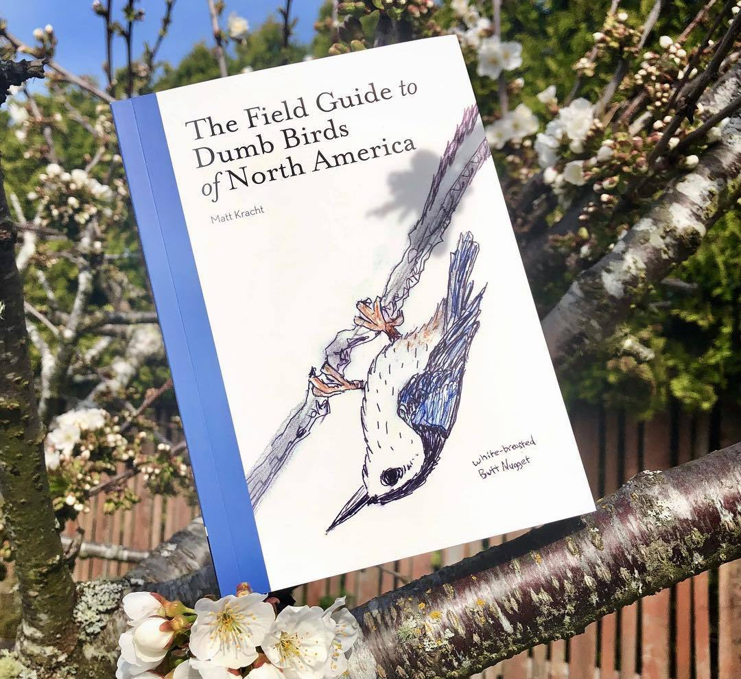 The Field Guide to Dumb Birds of North America, $15.95