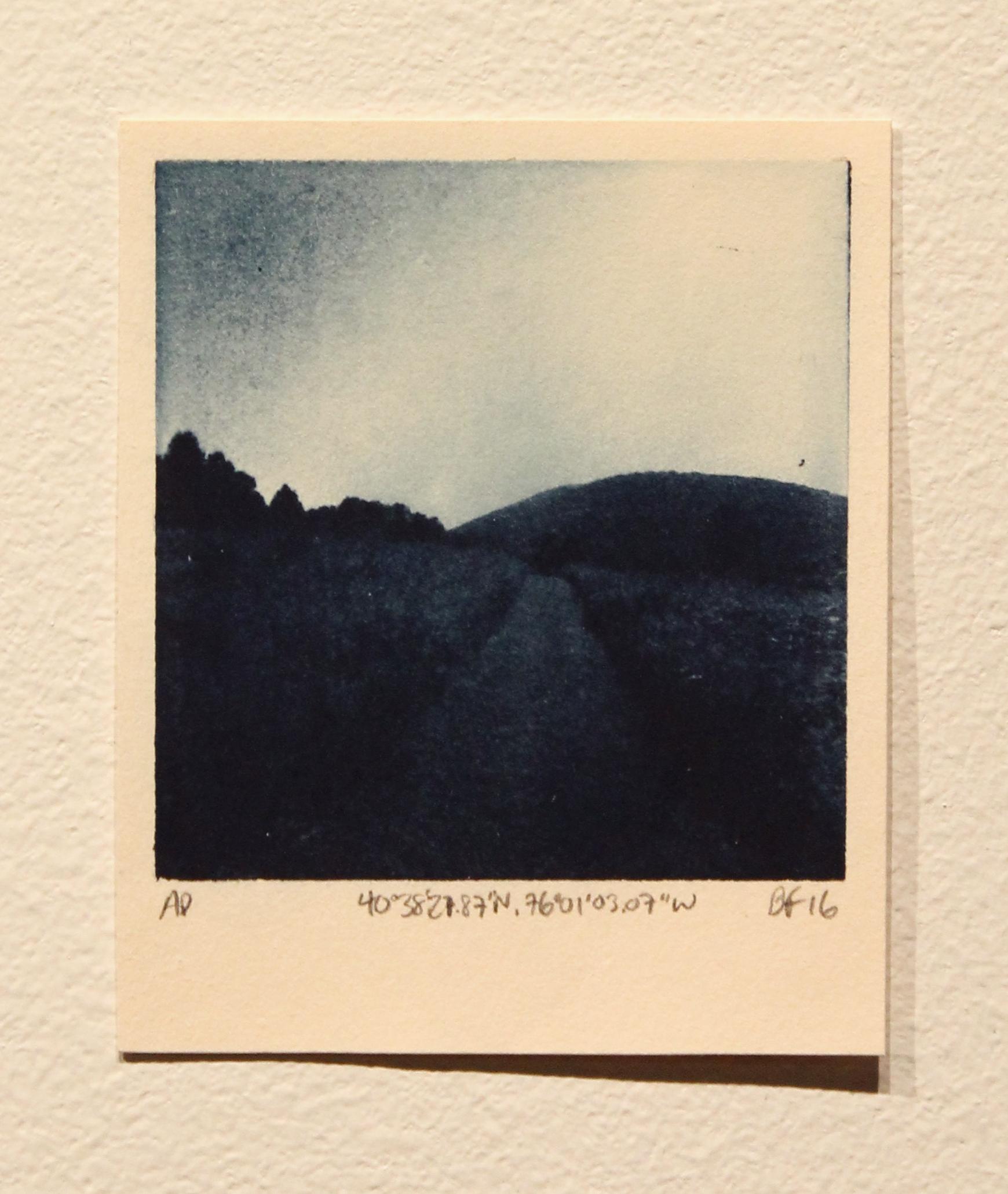 Polaroid III