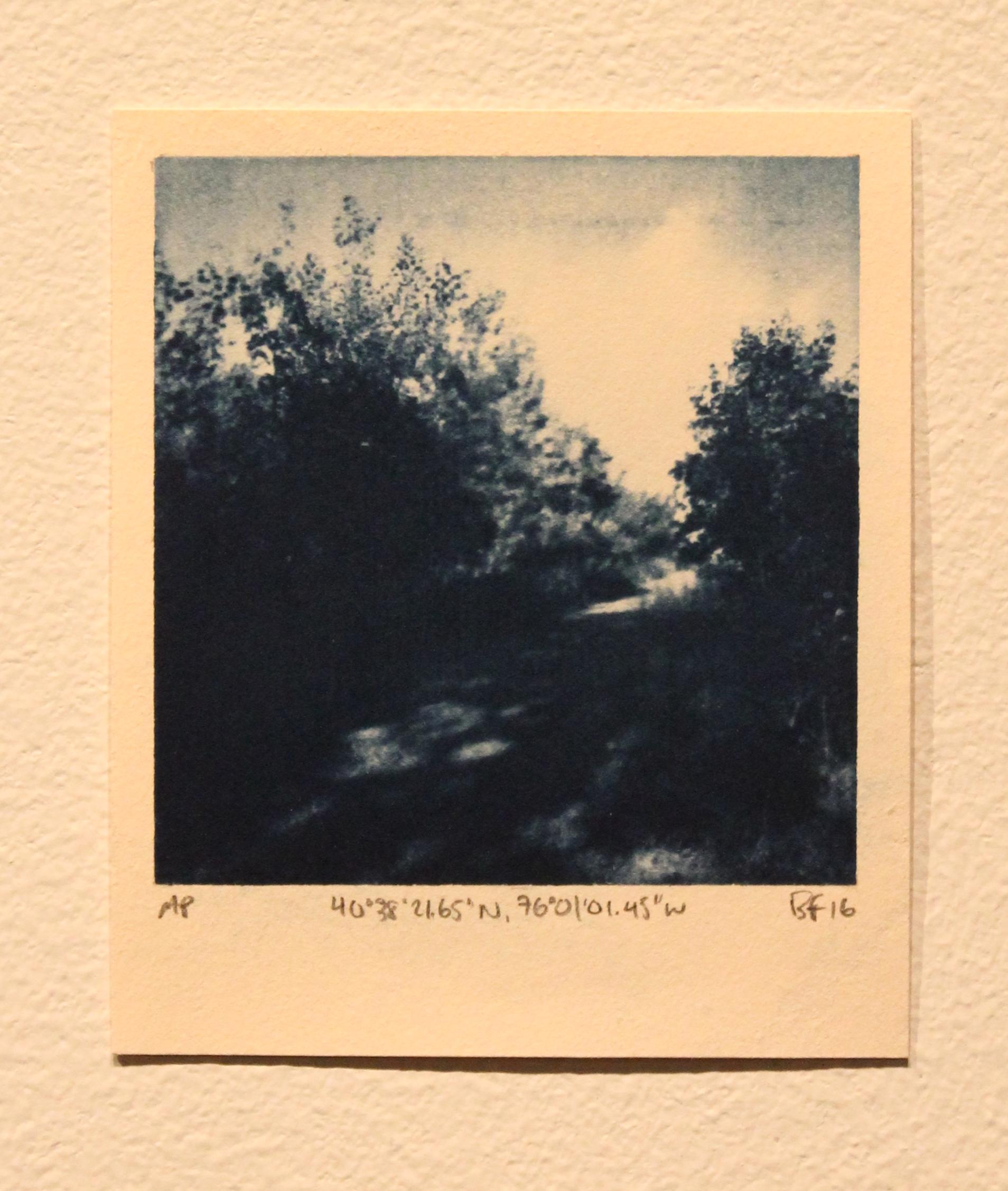 Polaroid I
