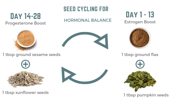 Seed Cycling Graphic.png