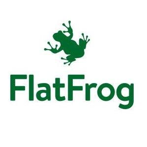 avitor.ie_flat_frog.jpg