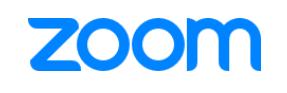 avitor-zoom-logo.png