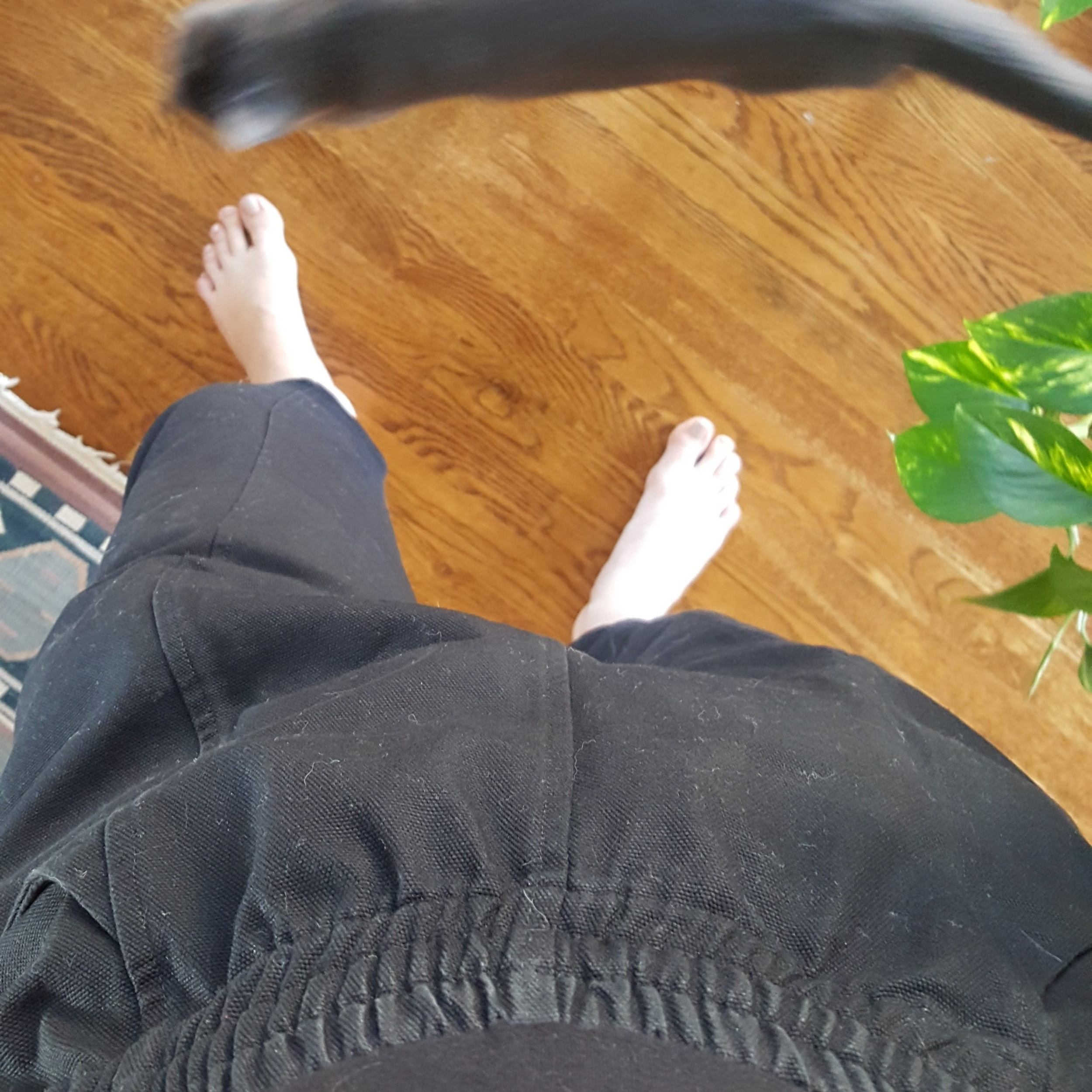 Elizabeth Suzann Canvas Clyde Work Pants