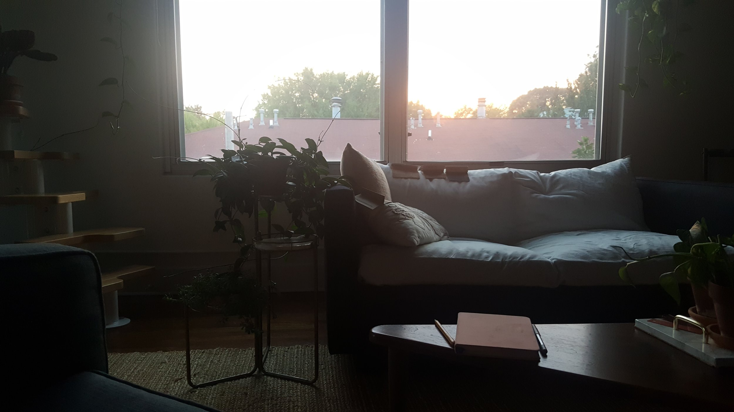 Living room window. Non-karate chopped cushions. Fabric swatches everywhere. Real life.