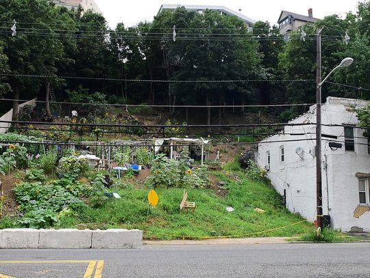 The farm in Weehawken is dug into the steep slope of the Palisades cliffs. Township officials say the work undermines the soil and causes mudslides, threatening the stability of homes on the hill.  Photo: Tariq Zehawi/NorthJersey.com