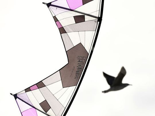 Willoughby's custom-made, two-line kite, one of hundreds of kites she owns.   Photo: Danielle Parhizkaran/Northjersey.com