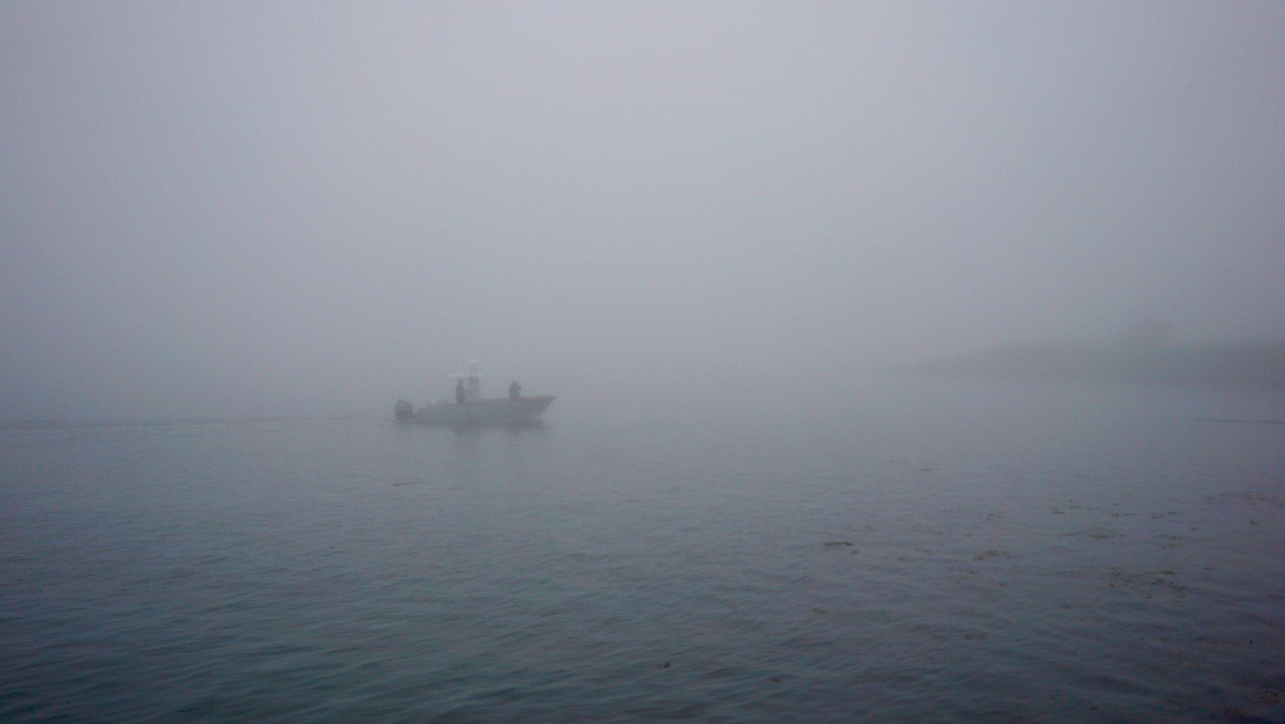 nk-fog2.jpg