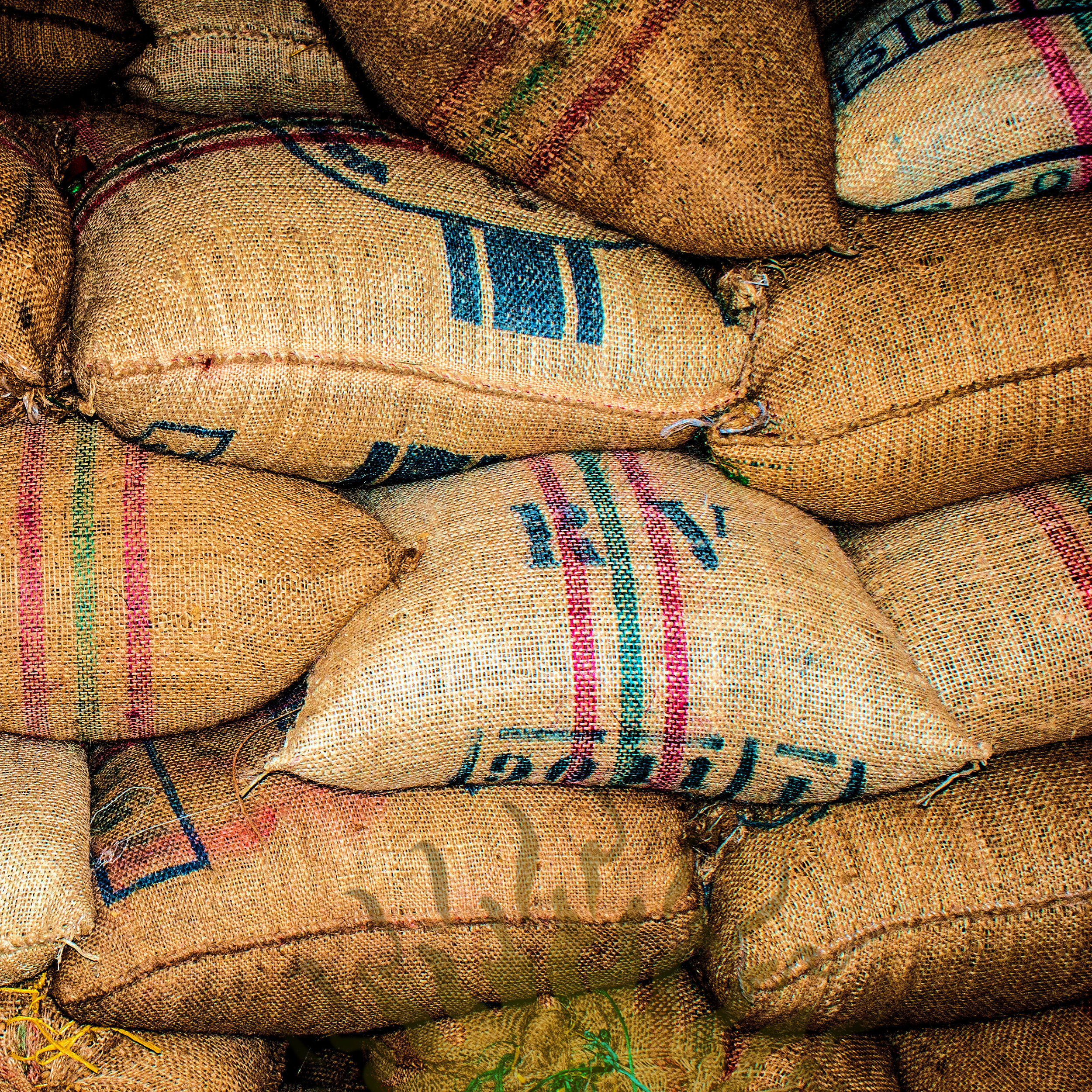 Bags of green coffee at the warehouse