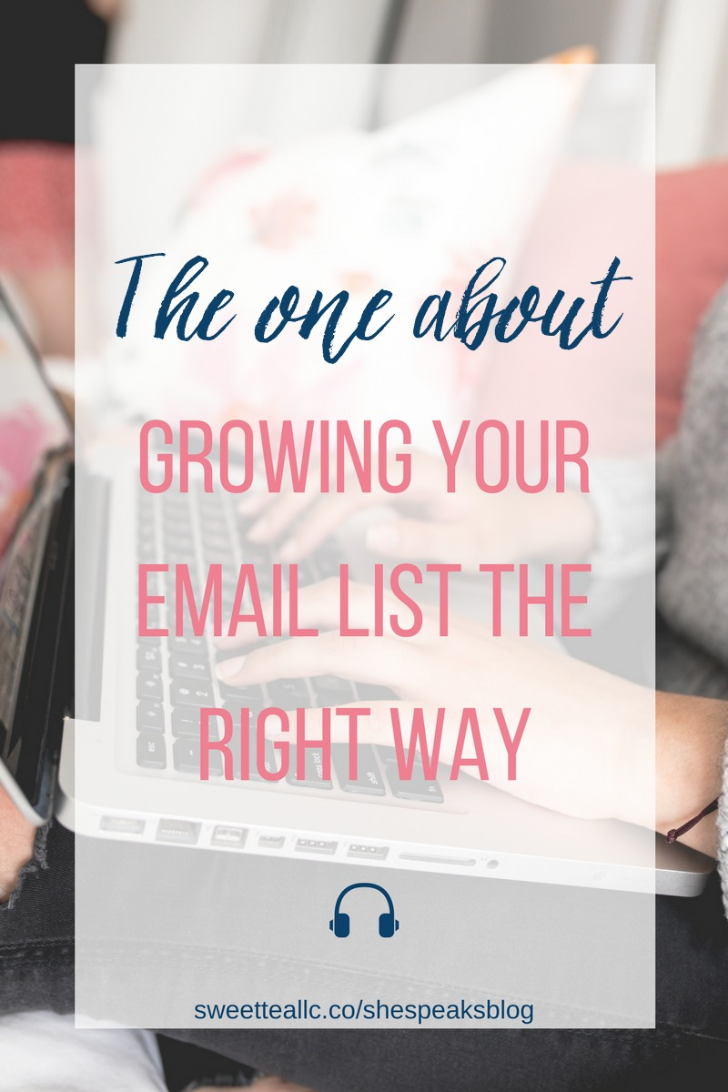Whether just starting out with email, or looking to take your list to the next level, these email list growth strategies will do the trick! Learn how to build & grow an engaged list of subscribers in She Speaks Blog!