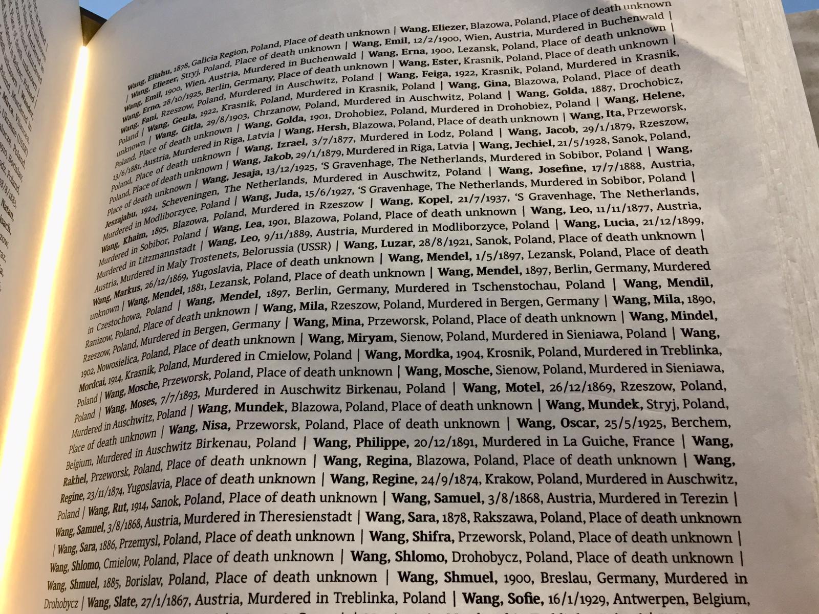 cientos de Wang registrados como víctimas de la Shoá, dos hojas y media…. estaba Zenus con los datos que yo dí a Yad Vashem, fuerte verlo escrito