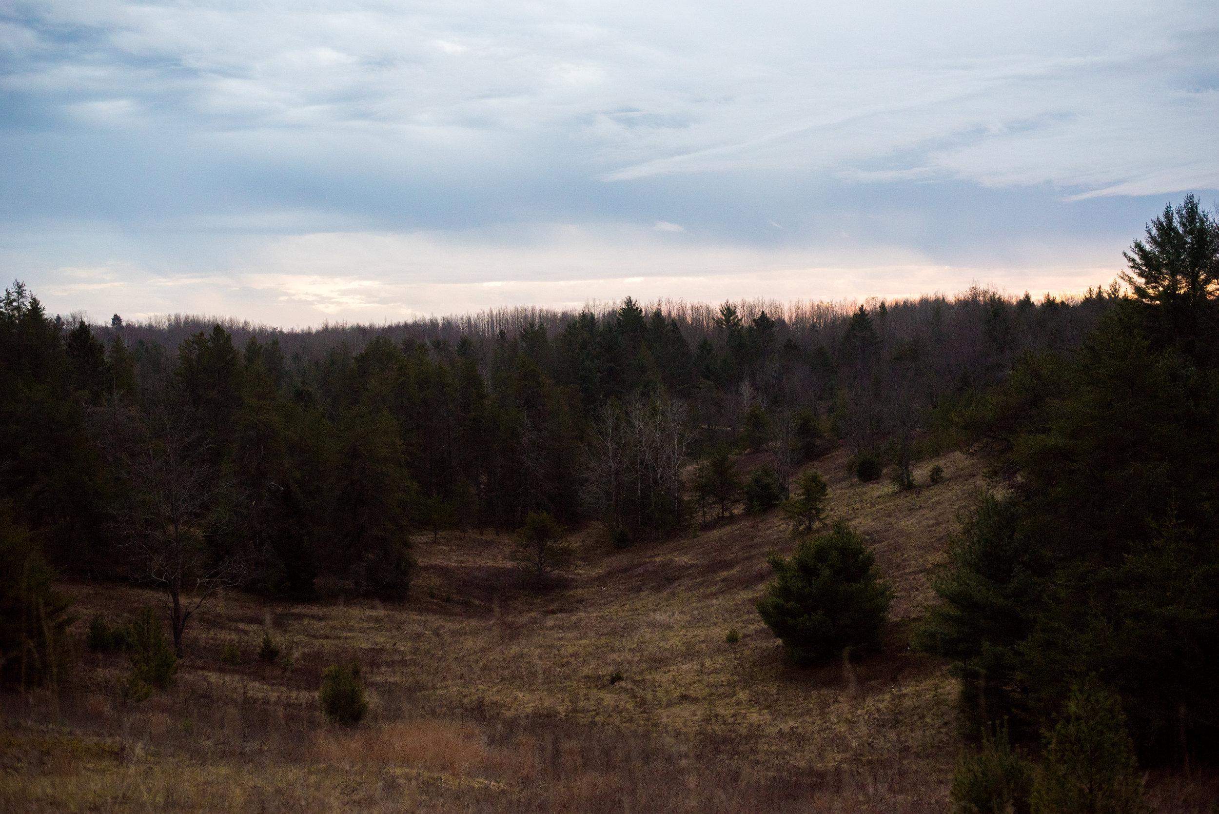 Upper Peninsula, MI