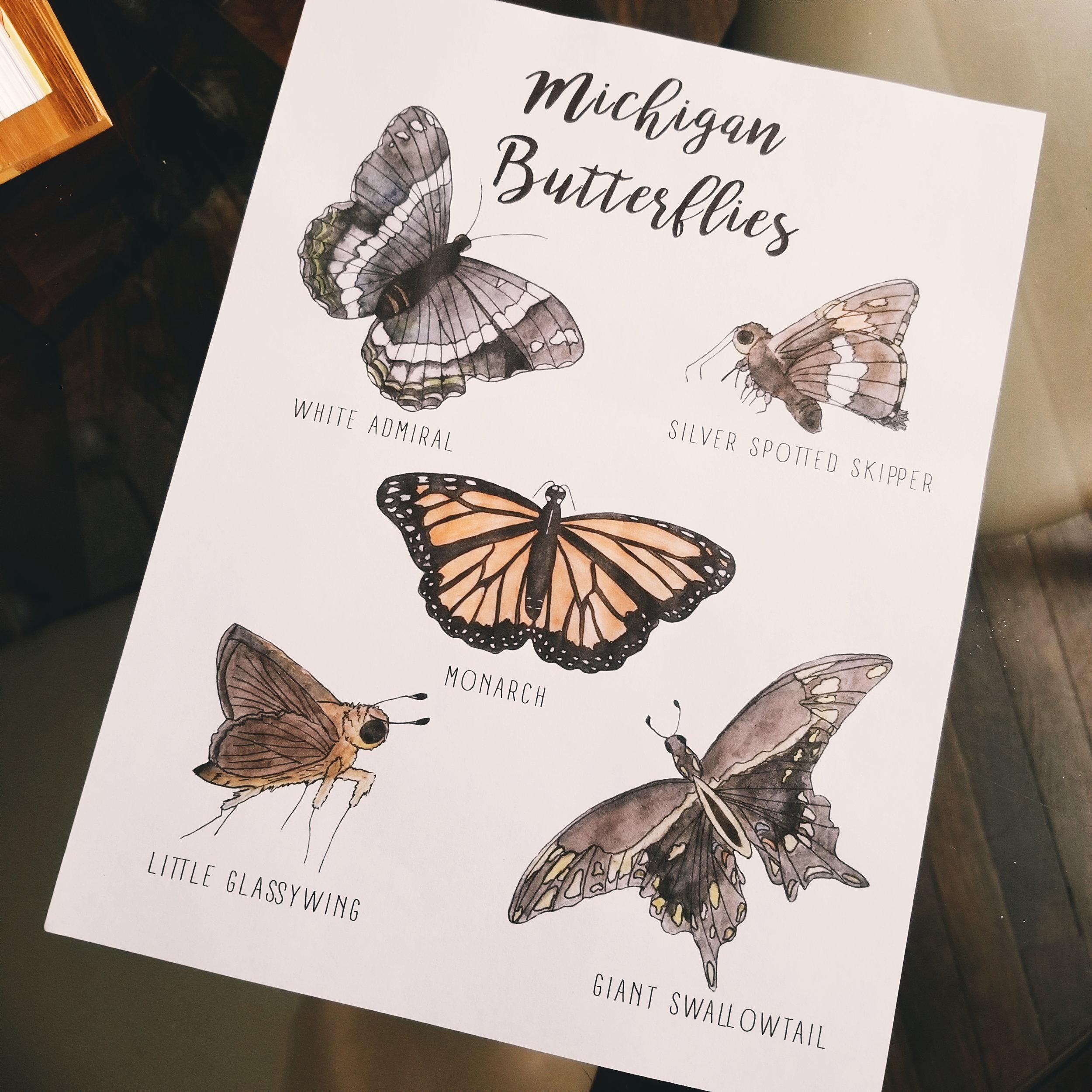 Michigan Butterflies