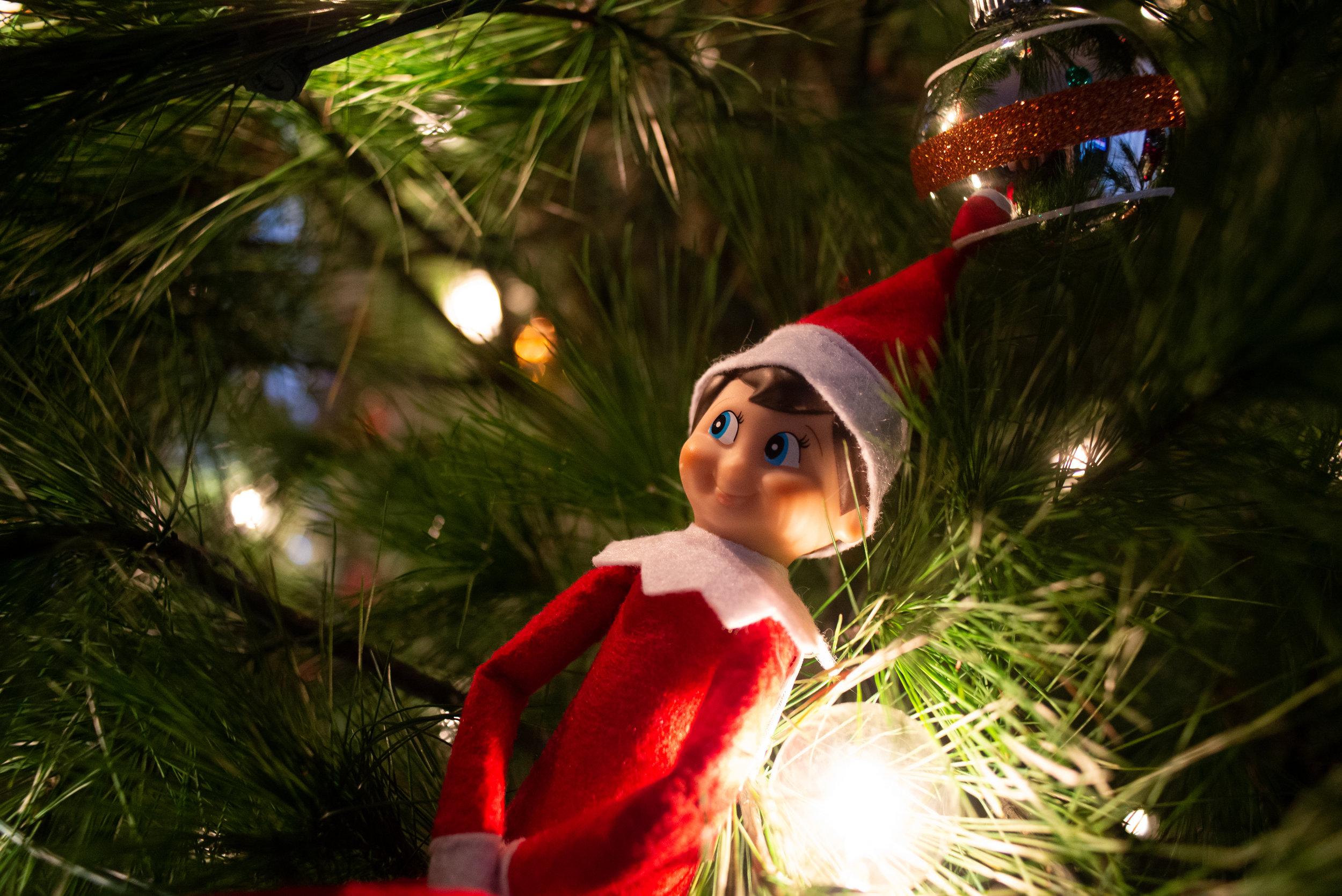 Stupid Elf