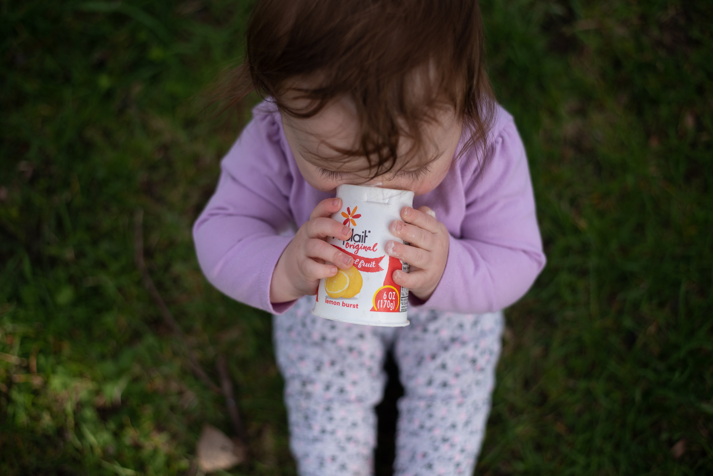 Yoplait Yogurt for Babies