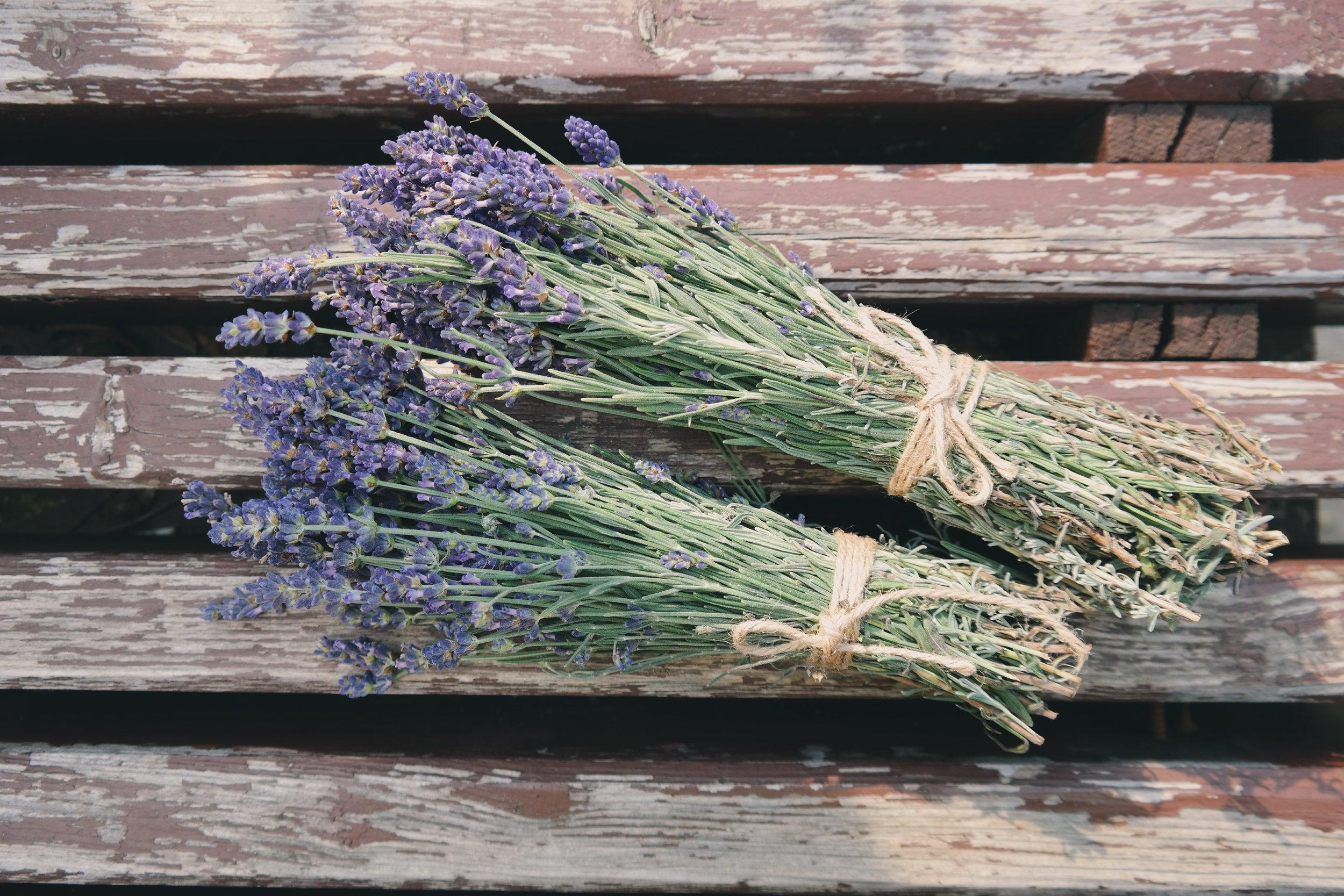 lavender.jpeg