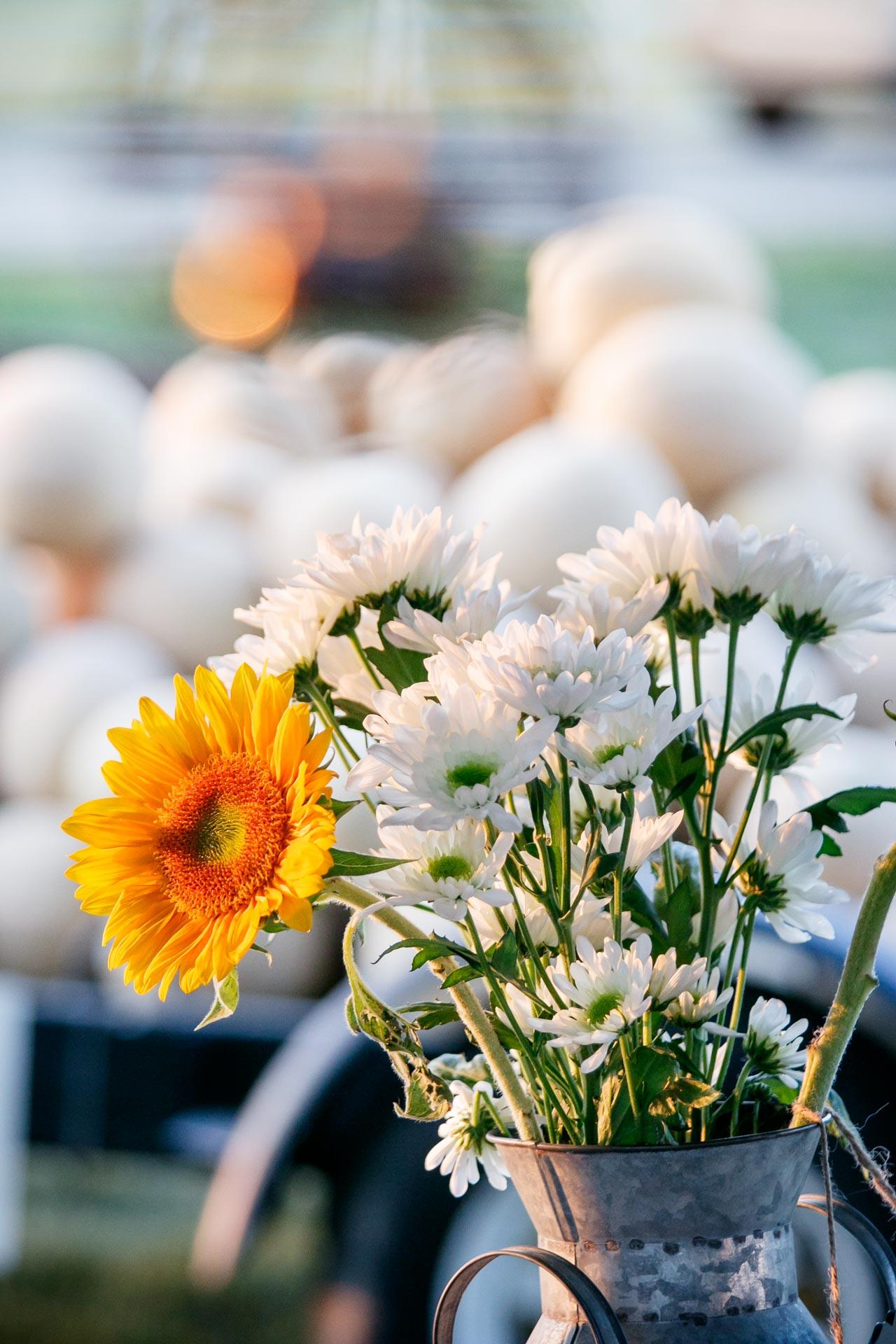 future-neenah-sunset-dinner-farm-to-table-adam-shea-photography-green-bay-appleton-neenah-photographer-27.jpg