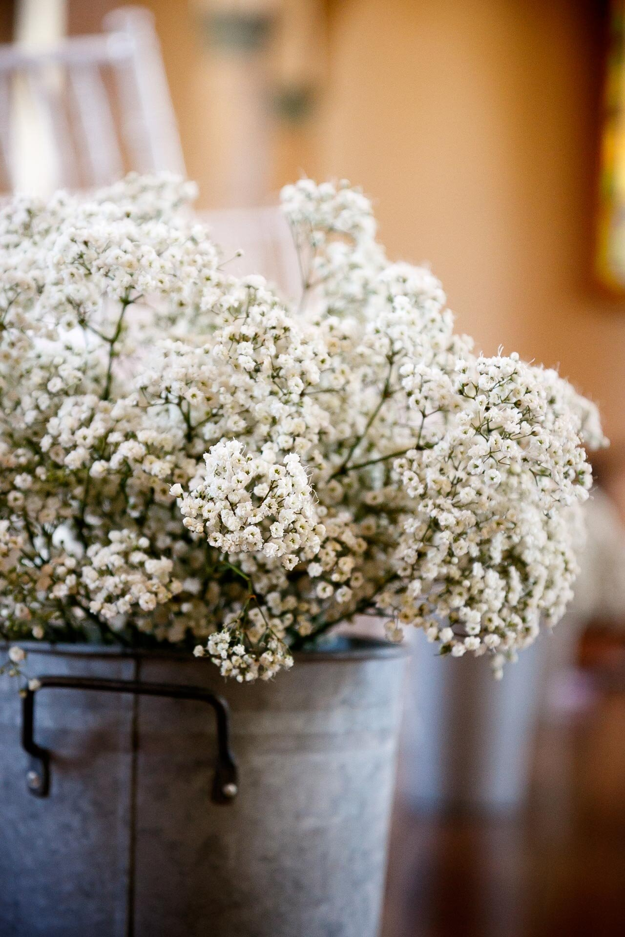 fall-lighting-adam-shea-photography-wedding-engagement-blog-adam-shea-photography-green-bay-appleton-neenah-photographer-11.jpg