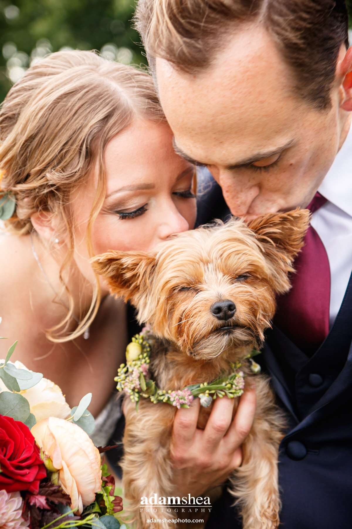 Gorgeous Wedding Fields at the Reserve - Stoughton WI - Adam Shea Photography - Bride and Bridesmaids - Bride and Groom with Dog