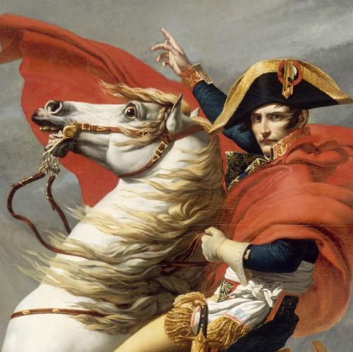 Napolean---Horse.jpg