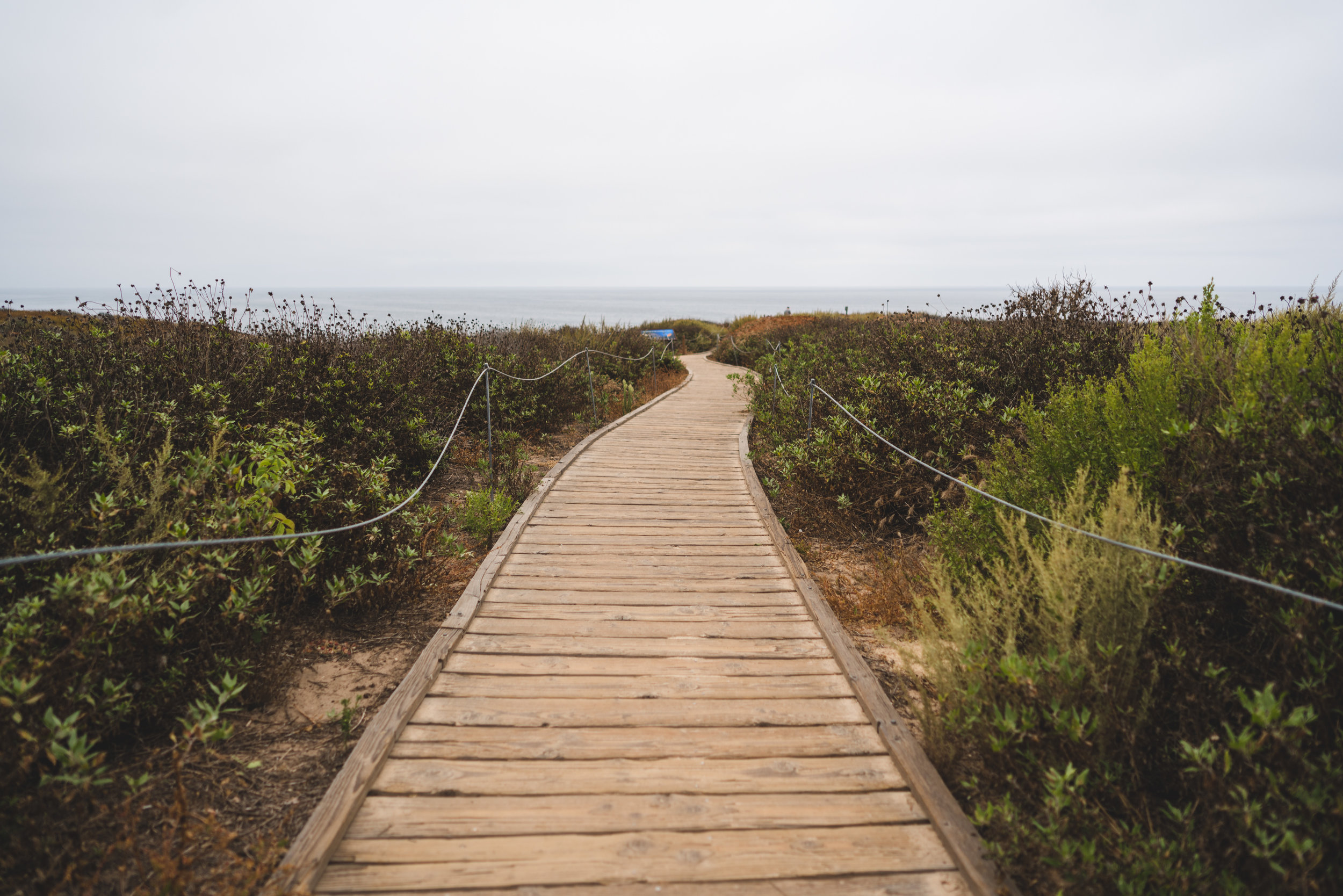 A beautiful walk to the Pacific from Newport Beach